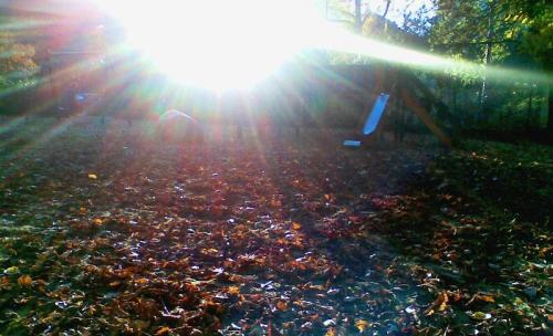 Herbstsonne -- Photo by Not quite like Beethoven, all rights reserved